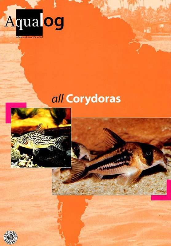 All Corydoras. Aqualog